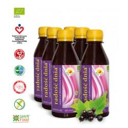 Napój probiotyczny OWOCE LASU  Radość Dnia Joy Day 200 ml