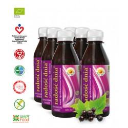 Napój probiotyczny OWOCE LASU SWEET Radość Dnia Joy Day 200 ml