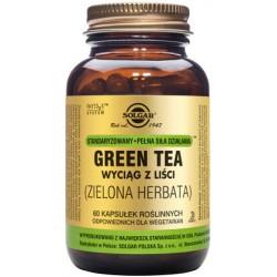 Solgar Green Tea Zielona Herbata standaryzowany wyciąg z liści x 60 kapsułek roślinnych