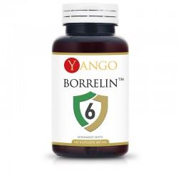 Borrelin 6™ x 100 kaps. YANGO